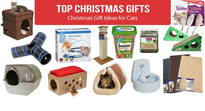 Best Christmas Gift Ideas for Cats 2017