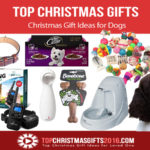 Best Christmas Gift Ideas for Dogs 2019