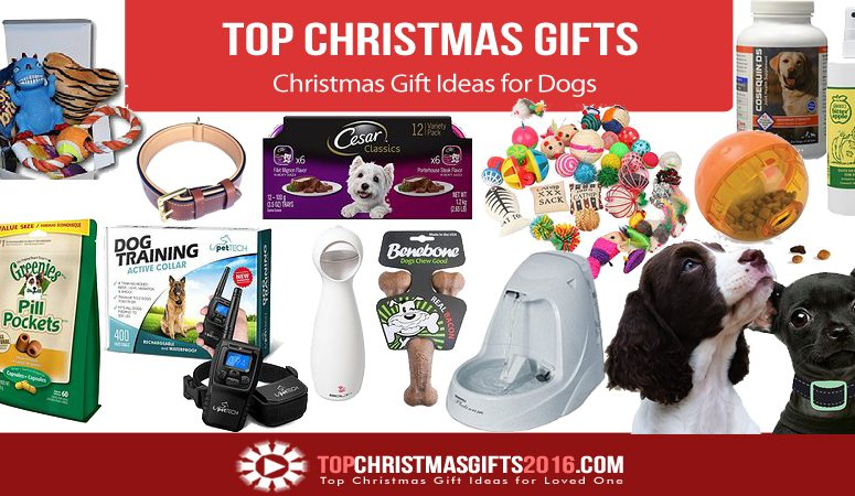 Best Christmas Gift Ideas for Dogs 2018