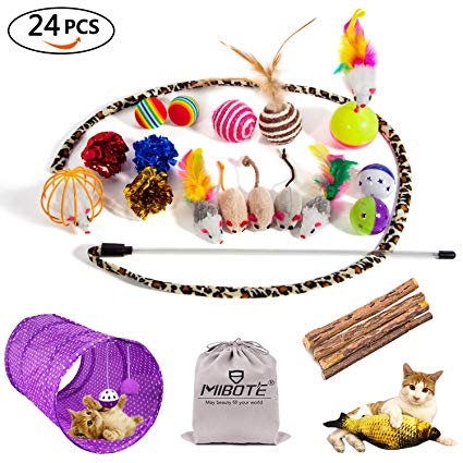 MIBOTE 24Pcs Cat Toys